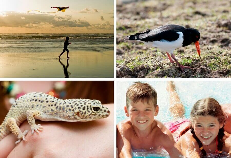 Top Family Activities in North Norfolk this February and March