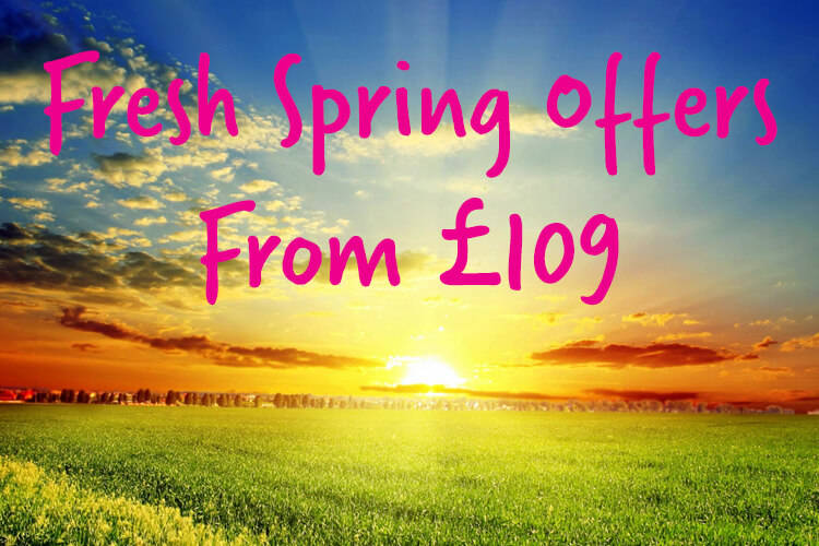 Fresh Spring Offers
